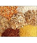 Cereale si fainuri